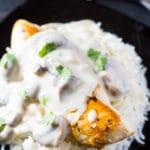 Grilled Chicken in Creamy Mushroom Sauce