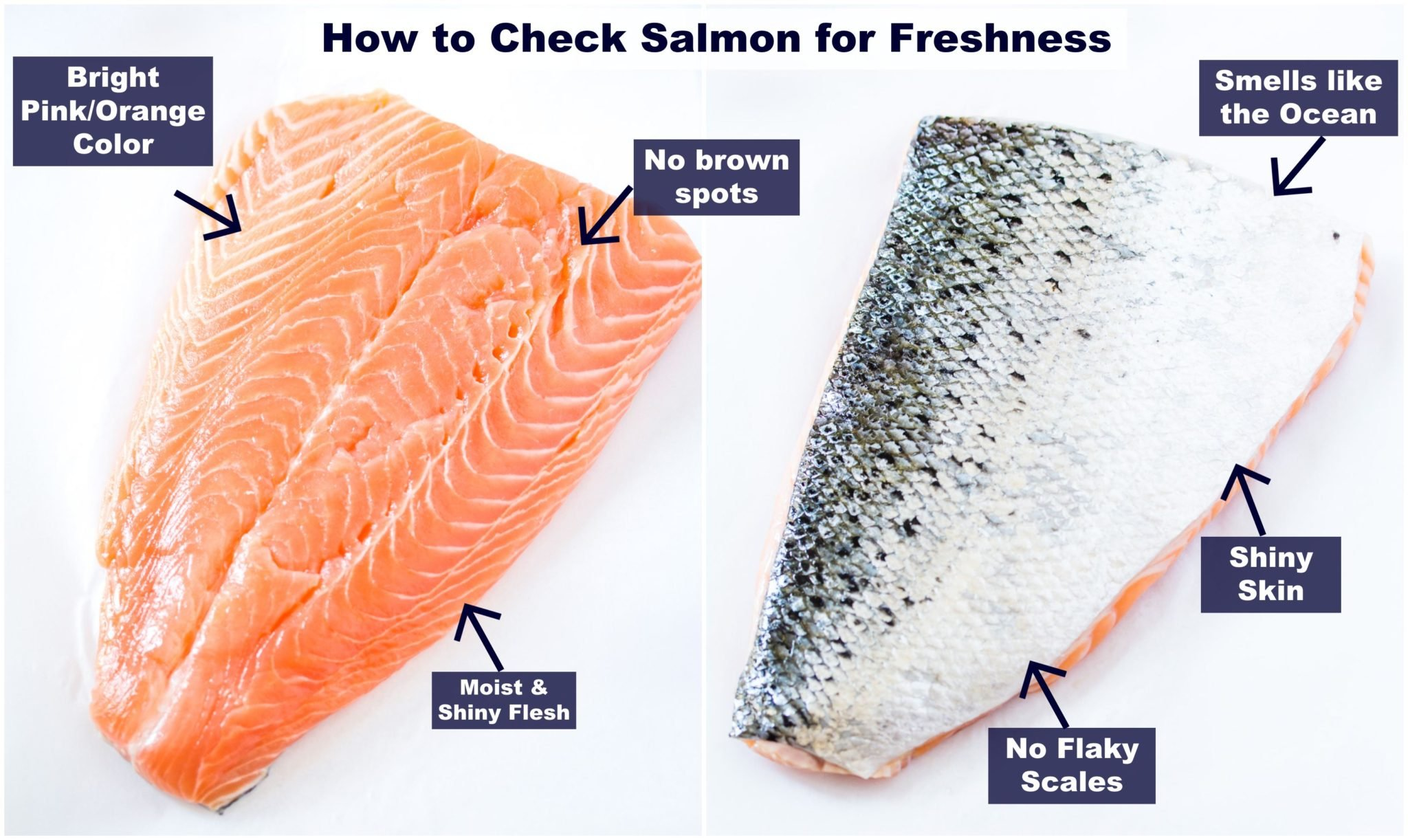 A fillet of salmon on white backdrop with text overlay indicating tips on buying fresh salmon.
